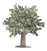 Lønn penger